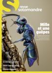 La Salamandre, 265 - Mille et une guêpes