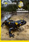 La Salamandre, 248 - La forêt des salamandres