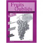 Fruits Oubliés, 1997-8 - Vignes en Cévennes – Le merlot – Le goutte-à-goutte