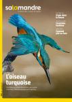 La Salamandre, 223 - L'oiseau turquoise