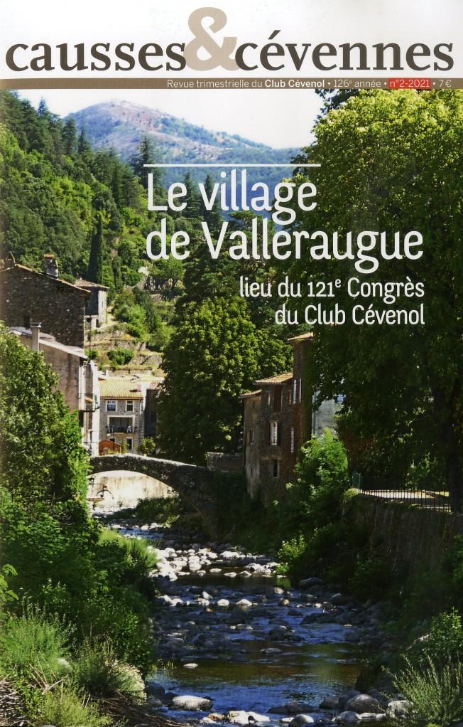 Causses et Cévennes, 2 - Le village de Valleraugue