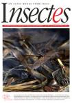 Insectes, 189 - bulletin n°189