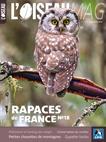 L'Oiseau magazine, 18 - Hors série : Rapaces de France