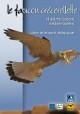 Faucon crécerellette et autres faucons méditerranéens