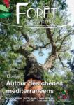 Forêt-entreprise, 251 - Autour des chênes méditerranéens