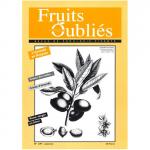 Fruits Oubliés, 1997-9 -  Pistachier – Cépages interdits – Verger en hiver – L'Amande en Aveyron