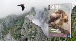 L'Oiseau magazine, 20 - Hors série : Rapaces de France