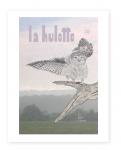 La Hulotte, 105 - La petite Chouette