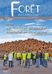 Forêt-entreprise, 234 - Sylvicultures du douglas intercef en Bourgogne