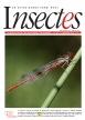 Insectes, 179 - Bulletin n°179