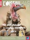 L'Oiseau magazine, 127 - Bulletin n°127