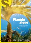 La Salamandre, 260 - Planète algue
