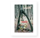 La Hulotte, 88 - Petits Mystères des grands bois