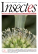 Insectes, 185 - Bulletin n°185